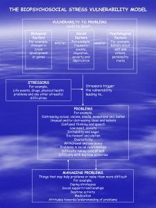 biopsychosocial vulnerability poster